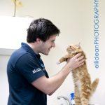 Rutland Veterinary Centre